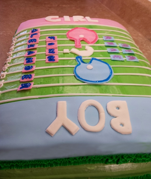 Baby Reveal Cake January 30th 2015 (1)